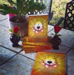 Brick By Brick Healing His Way Devotional & Workbook y